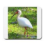 White Ibis Mousepad