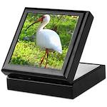 White Ibis Keepsake Box