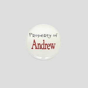 Andrew Mini Button