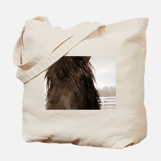 Baron*07 Tote Bag