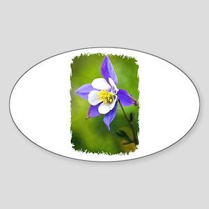 COLUMBINE FLOWER Oval Sticker