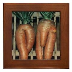 Carrot Adam and Eve Framed Tile