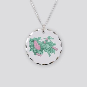 Rose of Sharon Necklace Circle Charm