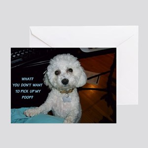 SOPHIE POOPSTER GREETING CARDS (Pk of 10)