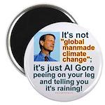 Al Gore climate change Magnet