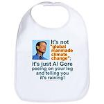 Al Gore climate change Bib