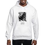 Amon Hooded Sweatshirt
