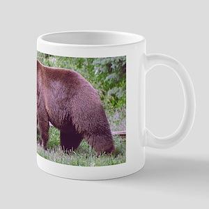 Brown Bear Looking for Grubs Mug