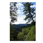 Eel River from the cliff Postcards (Package of 8)