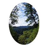 Eel River from the cliff Oval Ornament