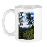 Eel River from the cliff Mug