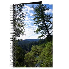Eel River from the cliff Journal
