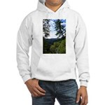 Eel River from the cliff Hooded Sweatshirt