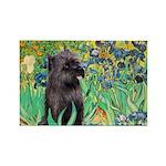 Irises / Cairn (#17) Rectangle Magnet (10 pack)