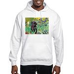 Irises / Cairn (#17) Hooded Sweatshirt