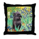 Irises / Cairn (#17) Throw Pillow