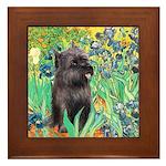 Irises / Cairn (#17) Framed Tile
