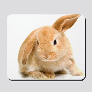 Spring Easter Bunny 2 Mousepad