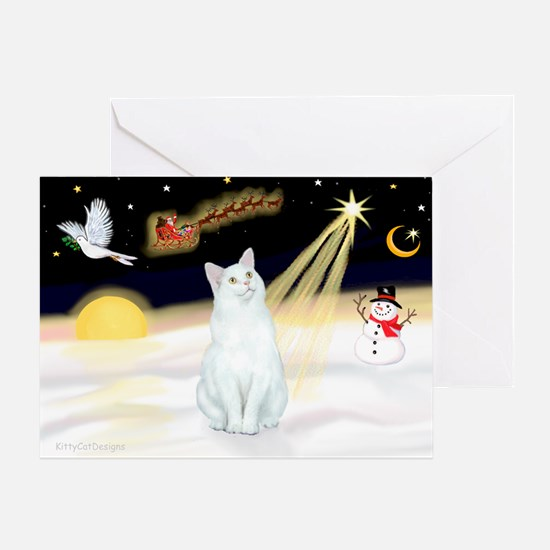Night Flight - White Cat Greeting Card