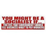 Anti Liberal Socialist Bumper Sticker