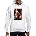 Accolade / Catahoula Leopard Hooded Sweatshirt
