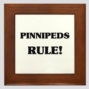 Pinnipeds Rule Framed Tile
