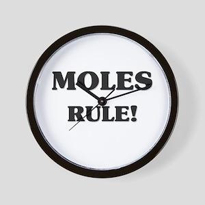 Moles Rule Wall Clock