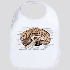 Human Brain Cotton Baby Bib