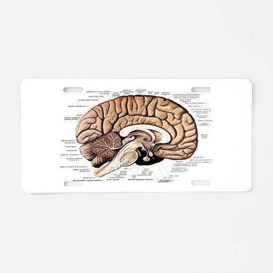 Human Brain Aluminum License Plate