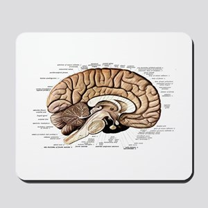 Human Brain Mousepad