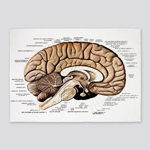 Human Brain 5'x7'Area Rug