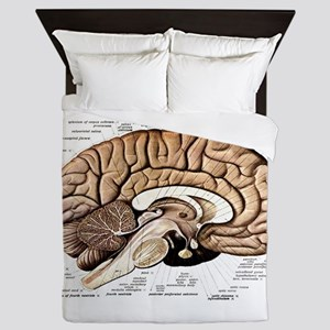 Human Brain Queen Duvet