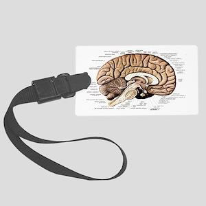 Human Brain Large Luggage Tag