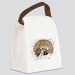 Human Brain Canvas Lunch Bag