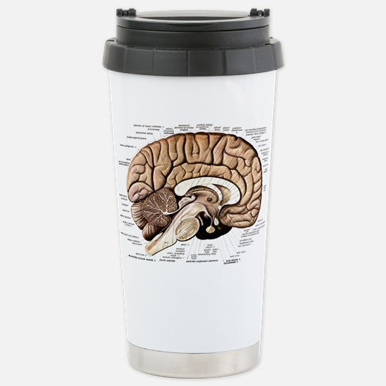 Human Brain Stainless Steel Travel Mug
