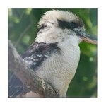 Kookaburra Tile Coaster
