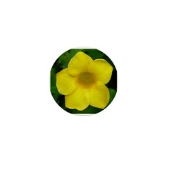 The Flower One Shop Mini Button (10 pack)