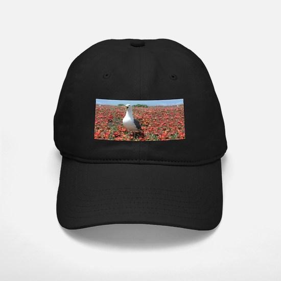 Helaine's Seagull Baseball Hat