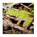 Pacific Treefrog Tile Coaster