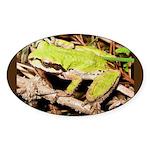 Pacific Treefrog Oval Sticker (10 pk)
