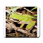 Pacific Treefrog Mousepad