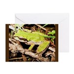 Pacific Treefrog Greeting Cards (Pk of 10)