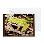 Pacific Treefrog Greeting Card
