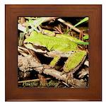 Pacific Treefrog Framed Tile