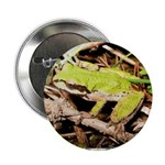 """Pacific Treefrog 2.25"""" Button"""