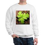 Poison Oak Sweatshirt