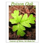 Poison Oak Small Poster
