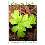 Poison Oak Large Poster