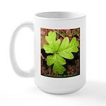Poison Oak Large Mug