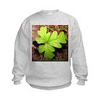 Poison Oak Kids Sweatshirt